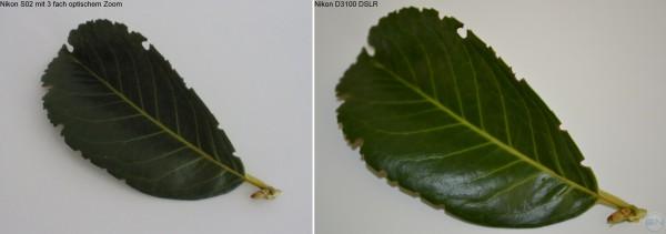 Gleiches Bild wie oben nur mit 3 fach optischem Zoom - links Nikon S02 - rechts Nikon D3100