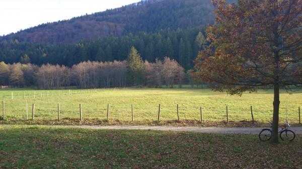 smartcamnews.eu-sony xperia z1-für den Herbst geschaffen