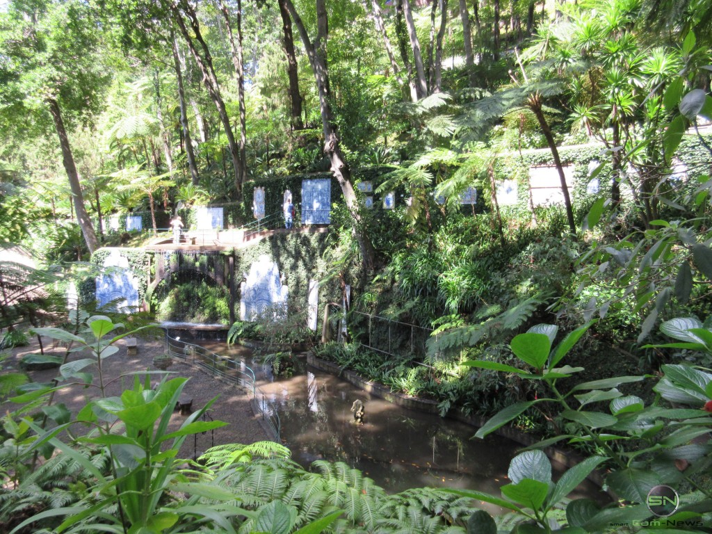 Canon-Ixus-265HS-botanischer Garten