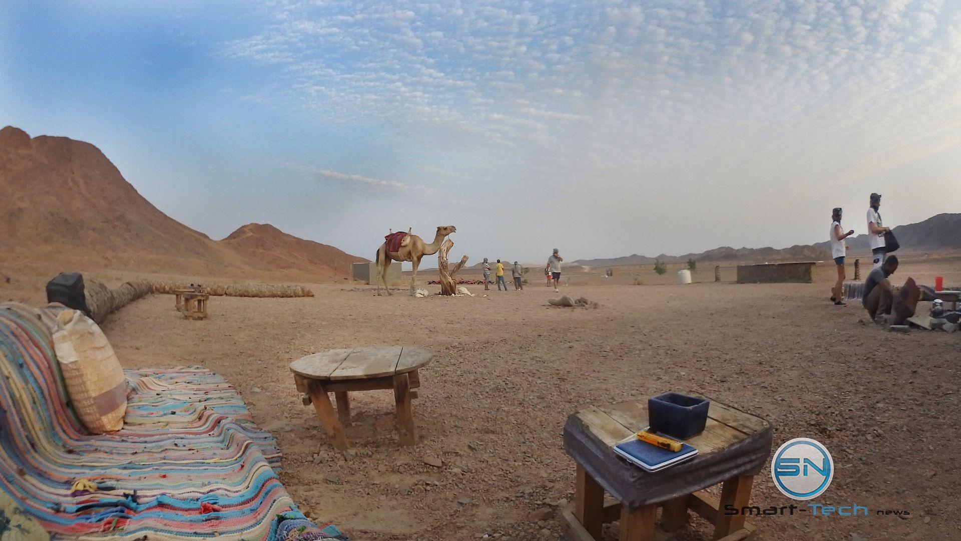 Safari-Tour - MarsaAlam 2017