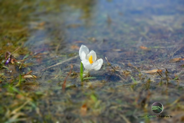 Minuatur Effekt - Nikon 1 V3 - SmartCamNews