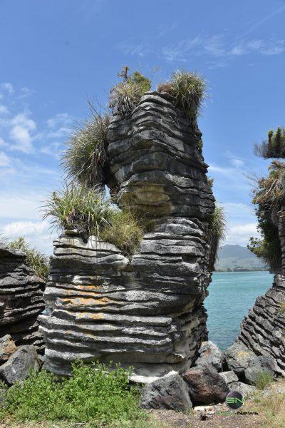 Fels am Strand - Neuseeland - Nikon D750 - SmartCamNews