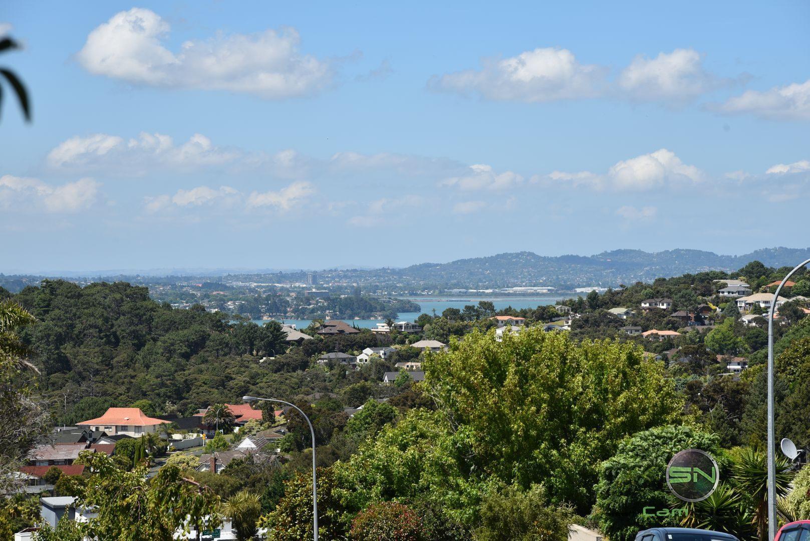 grün so weit das Auge reicht - Neuseeland - Nikon D750 - SmartCamNews