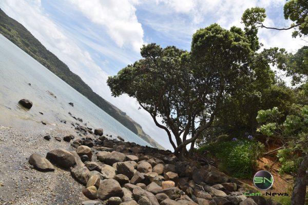 schiefe Perspektive - Neuseeland - Nikon D750 - SmartCamNews